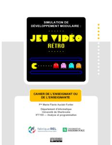 siumlation_jeu video_REL